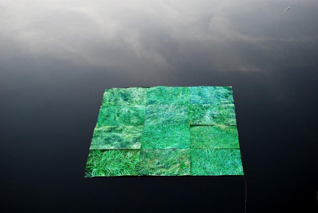 Drijvend Gras